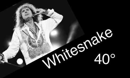 Whitesnake, band, inglese, musica, compleanno, 40