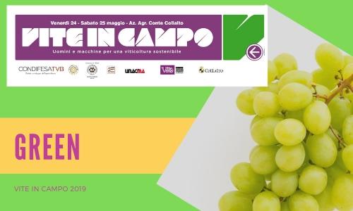 Prosecco, vite, vino, sostenibilità