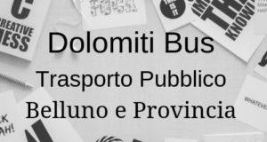 DolomitiBus Informazioni Utili